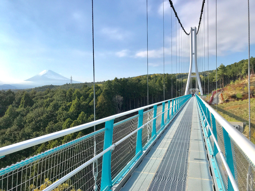 富士山と三島スカイウォークのログ
