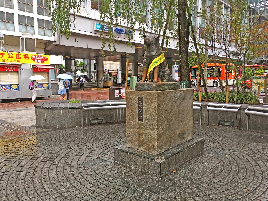 東急ハンズ,渋谷,ログハウス