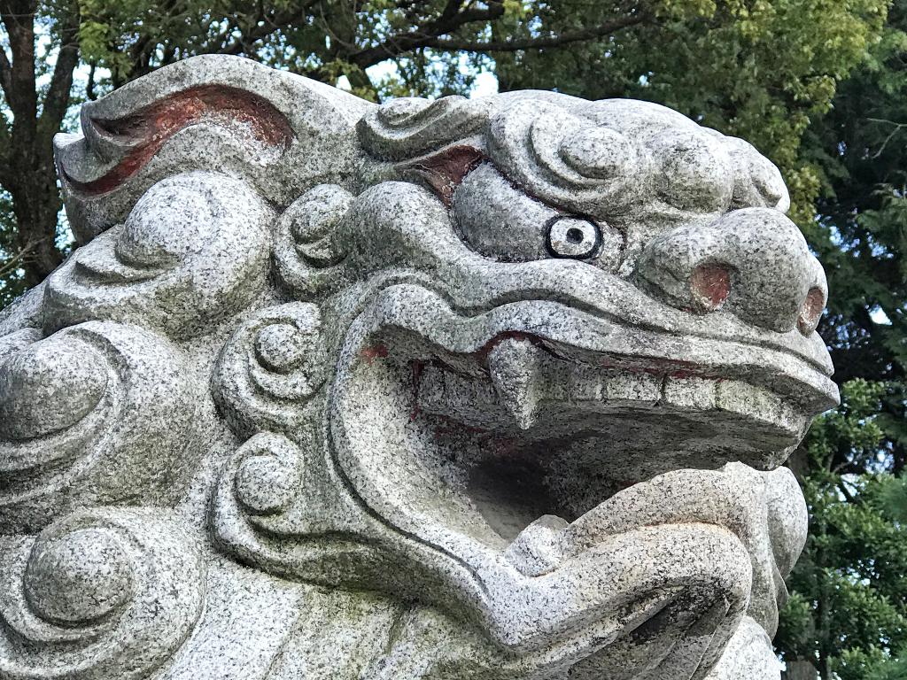 二荒山神社,初詣