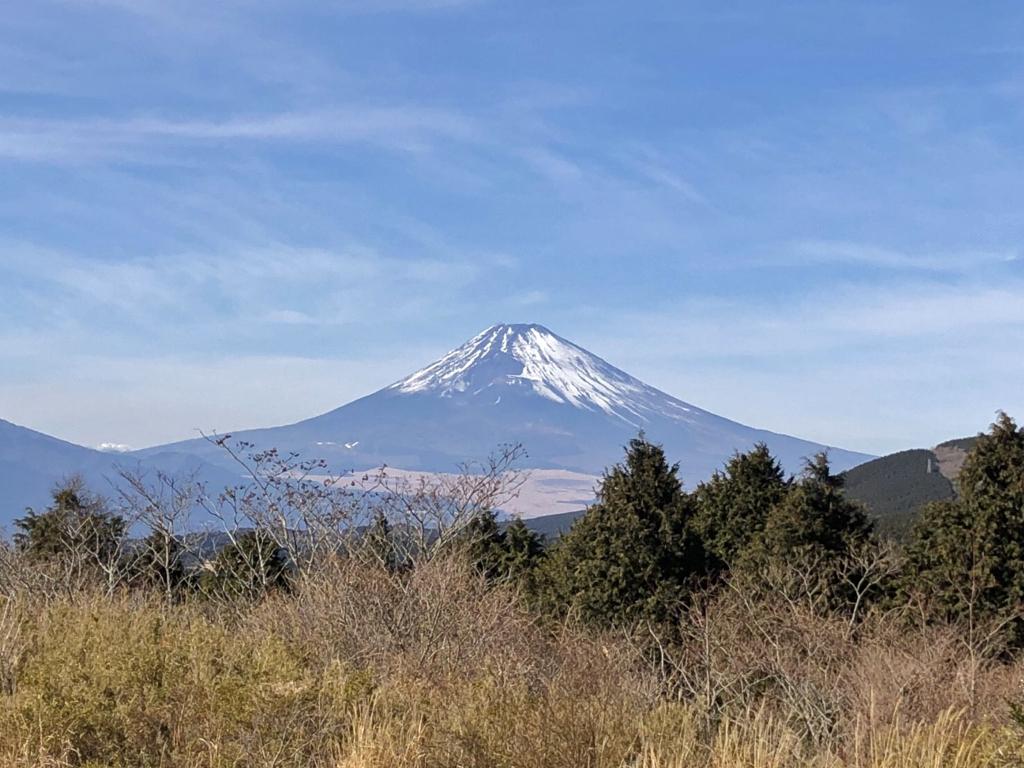 真冬の富士と海の静岡へ!