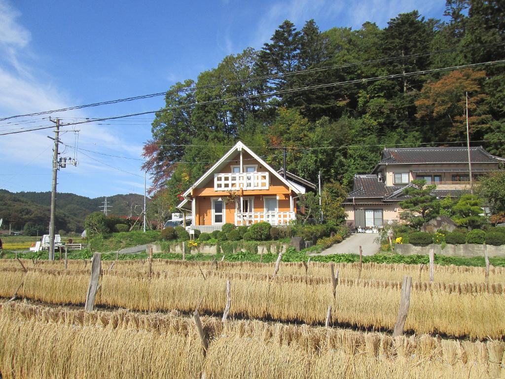 ログハウス,田園地帯,稲刈り