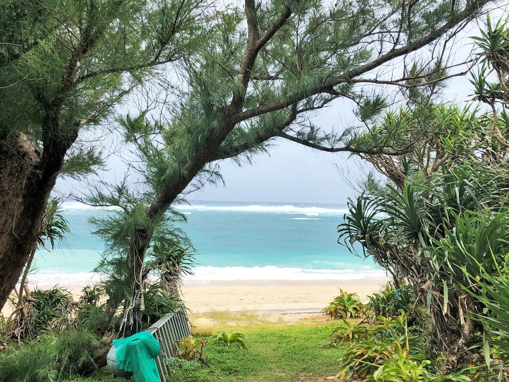 ログハウス,奄美大島,加計呂麻島,木の力